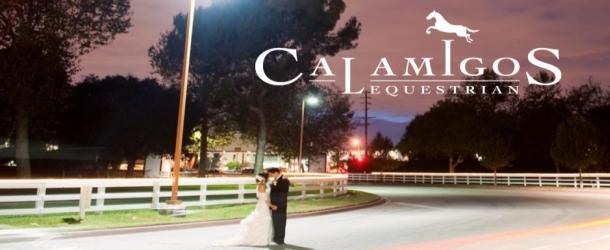 Calamingos610X250