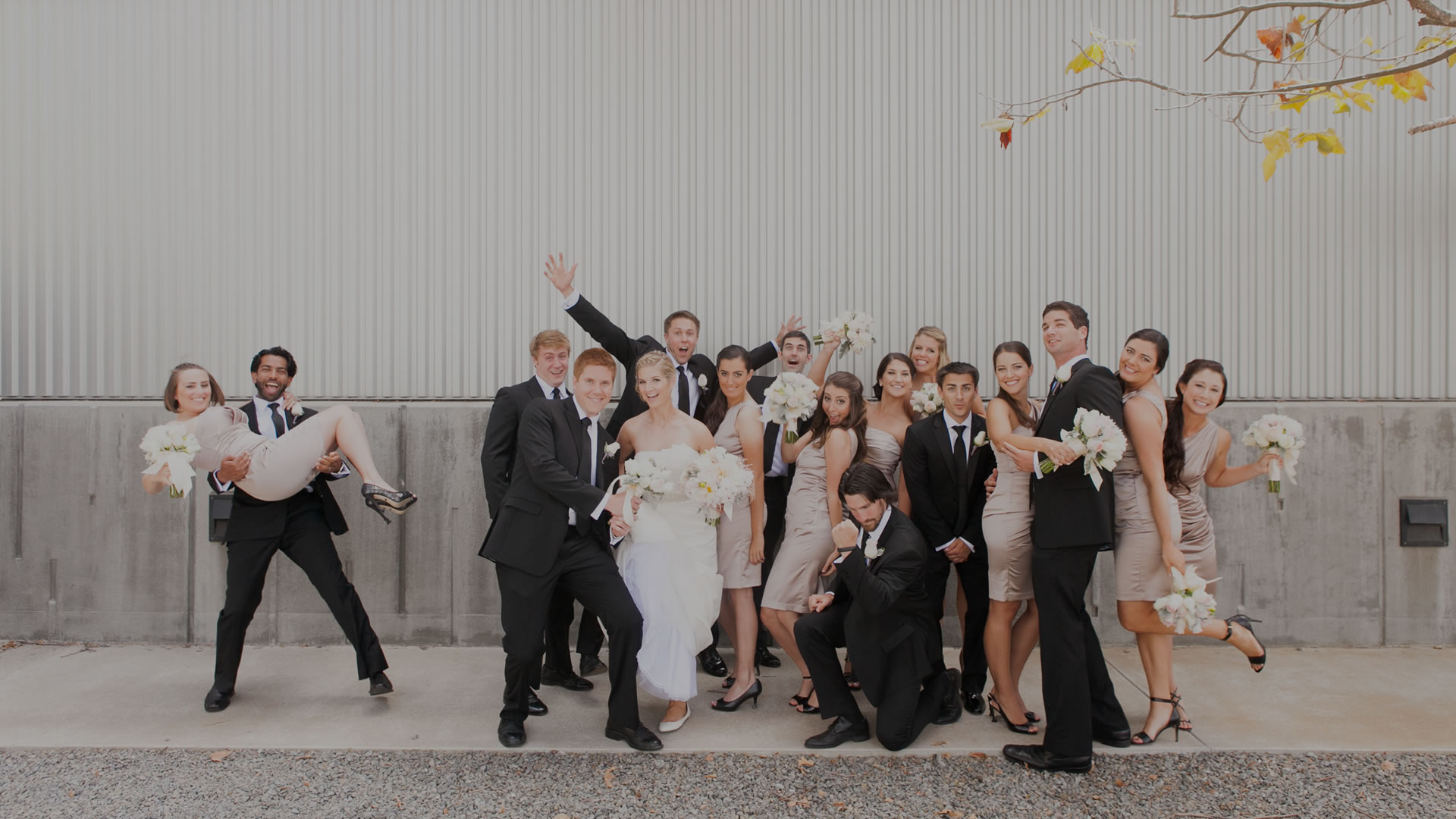 wedding-party_bg